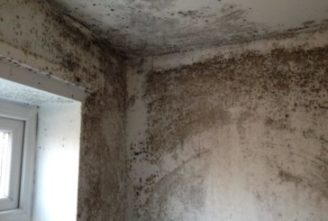 Airtech offers landlords free technical CPD seminar on condensation and mould