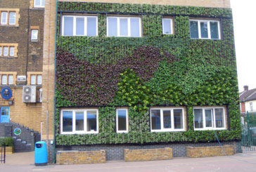 Local authority living walls