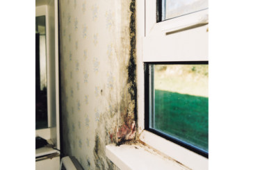 Ventilation strategies for tackling condensation and mould in homes