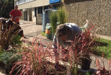 Residents transform tower blocks for 'Plants for People' project