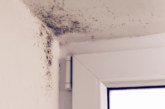 London Assembly Environment Committee report illustrates London's damp and mould problems