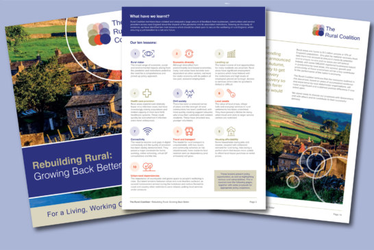 Level-up rural areas to support England's economic recovery