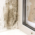 Elta Fans | Condensation: A critical concern in social housing
