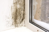 Elta Fans | Condensation: A critical concern in social housing