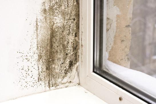 Elta Fans   Condensation: A critical concern in social housing