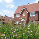 Thehousebuildingindustry can lead the wayonbiodiversity