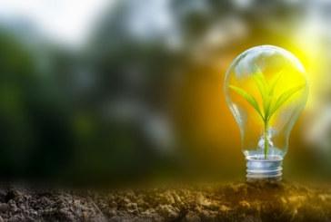 Flagship solar farm development to be considered