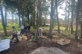 Mears and Thurrock Council bring new life to the Falconwood