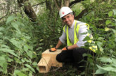 The hedgehogs move in:G F Tomlinsoncontinues to protect local wildlife